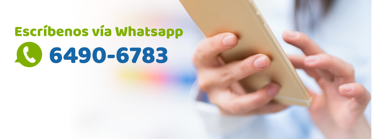 Contacto por Whatsapp, nuevo servicio al cliente, Whatsapp contact, new customer service